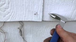 Pulling nails from asbestos siding