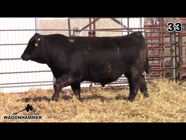 Wagonhammer Ranches Lot 33