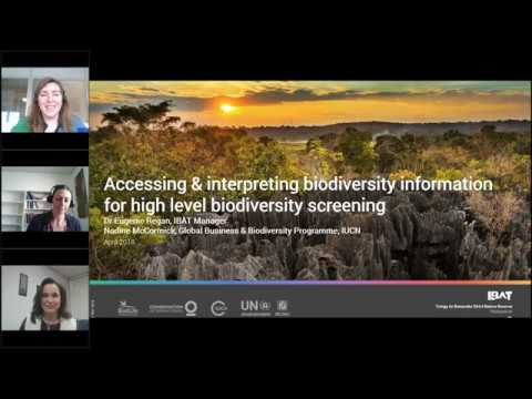 Accessing and interpreting biodiversity information for high-level biodiversity screening