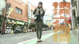 RokkakubashiYokohama2012VI09