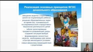 Образовательная программа дошкольного образования Мозаика  Концептуальные основы, особенности реализ