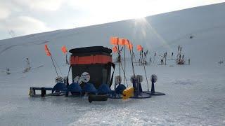 Не успел поставить Жерлицу и Щука не заставила себя долго ждать Рыбалка в мороз 2021