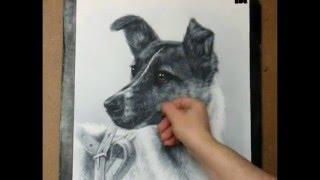Laika Space Dog drawing
