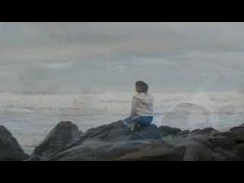 Go Twilight Tour at First Beach at LaPush