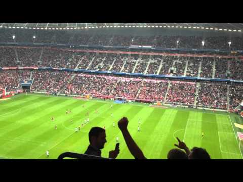 fc bayern munich crowd