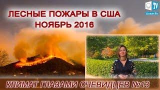 Лесные пожары в США ноябрь 2016. Климат глазами очевидцев № 13
