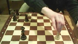 Шахматы для начинающих  2 урок