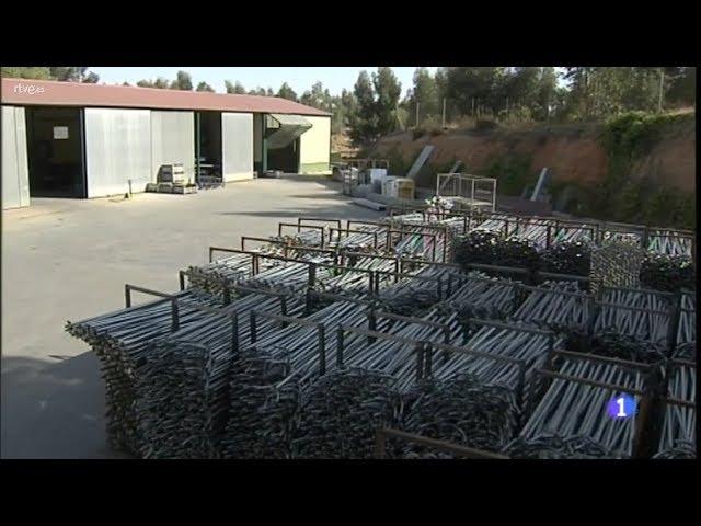 Beneficios de las berries a su entorno: 4 millones de kilos de tubos fabricados para invernaderos