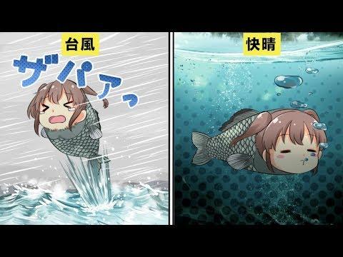 【衝撃】台風が来た時、魚はどこにいるのか?