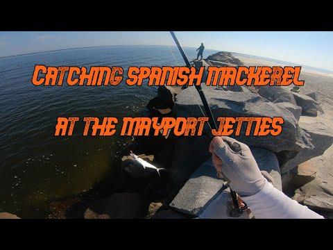 Catching Spanish Mackerel At The Mayport Jetties