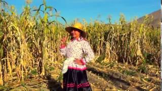 "AREQUIPA 01 - La Idelfonsa - VIDEO CLIP de Arturo García ""E..."