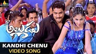 Naa Alludu Video Songs | Kandhi Chenu Kada Video Song | Jr.NTR, Shriya, Genelia | Sri Balaji Video