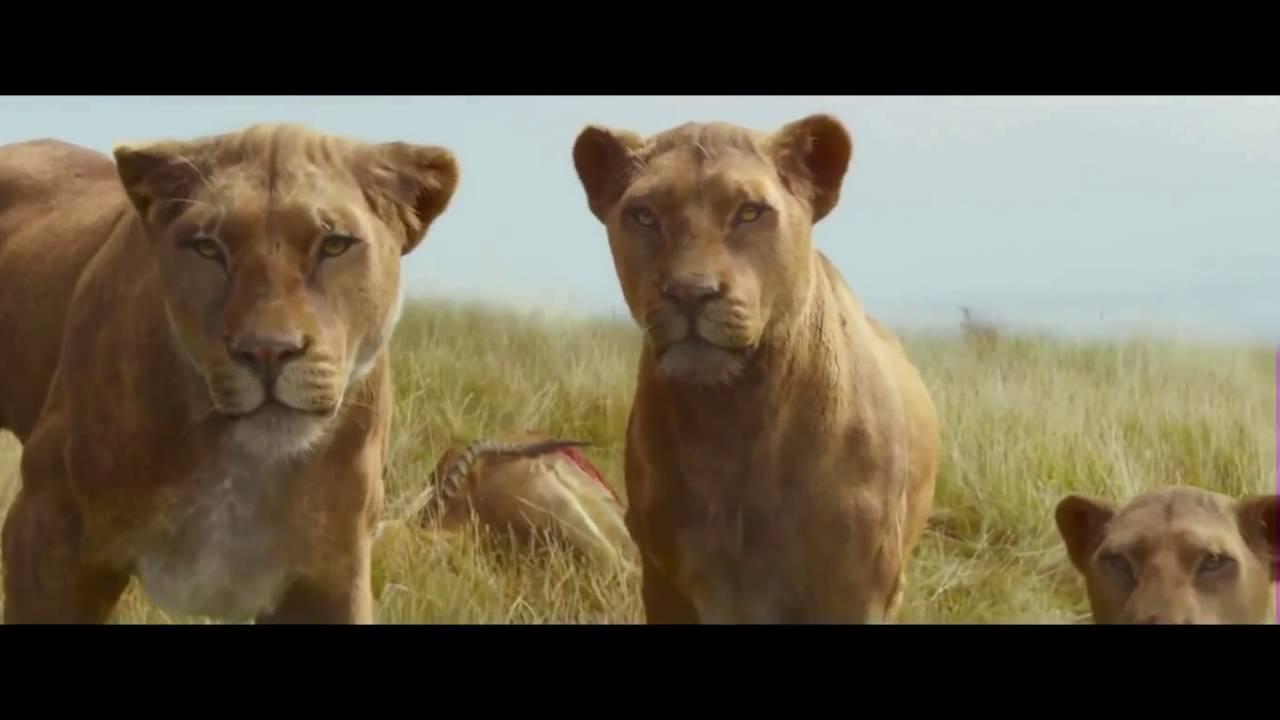 the legend of tarzan  2016  - lion scene