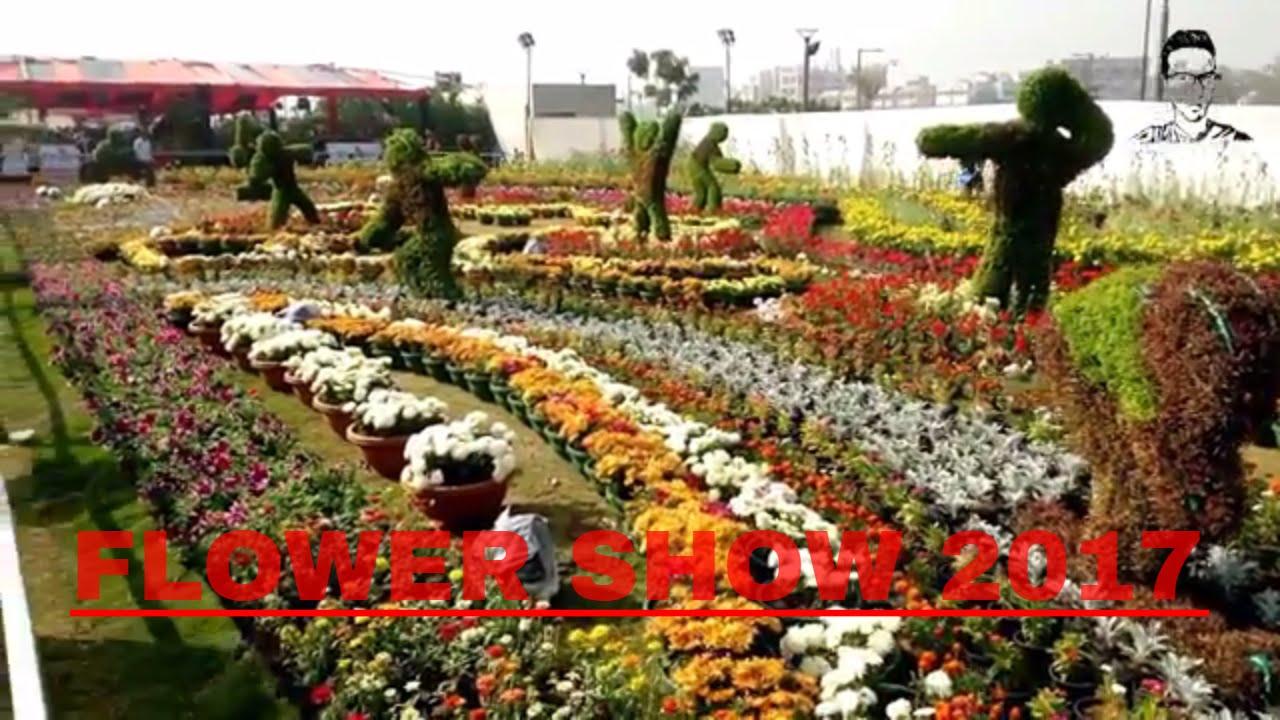 flower show ahmedabad 2017 || riverfront park flower garden