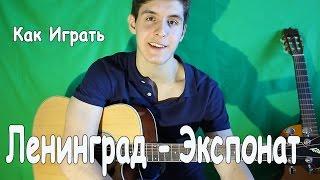ЛЕНИНГРАД - ЭКСПОНАТ (На Лабутенах) Как играть на Гитаре/ Полный Разбор Песни Экспонат [1 часть]