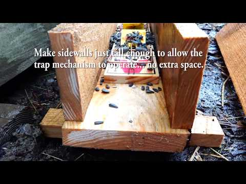 Rat Trap and Mouse Trap box that WORKS Keeping Pets Safe 100% Effective
