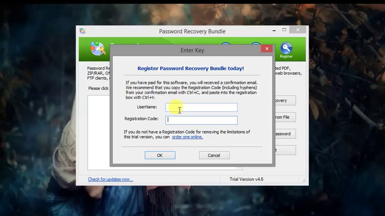 rar password recovery professional registration code and username