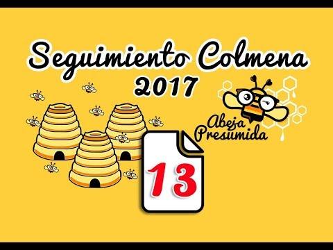 Apicultura - Seguimiento colmenas 13 - Follow up hives 13 - 25 Agosto 2017