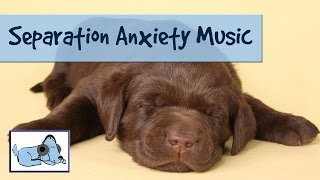 30+ Minutes of Relaxing Dog Music. Calming Sounds to Relax Anxious Dogs - Separation Anxiety Cured! thumbnail