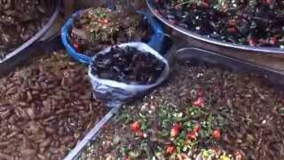カンボジアで出会った香ばしい虫料理たち! カンボジアの虫料理について...