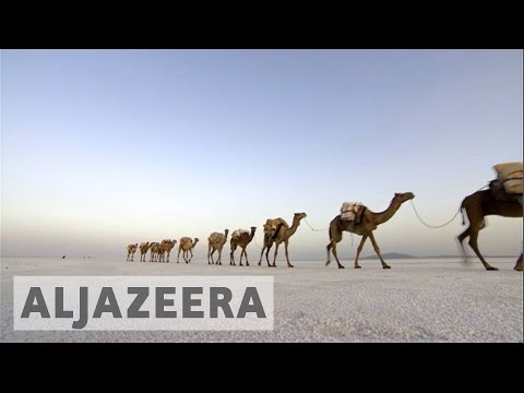The Danakil Depression : Salt mining in one of the hottest places on earth