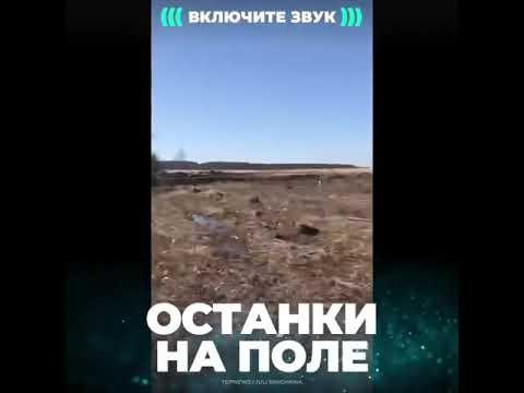 КРУШЕНИЕ САМОЛЕТА АН-148(ЧАСТИ ТЕЛ)