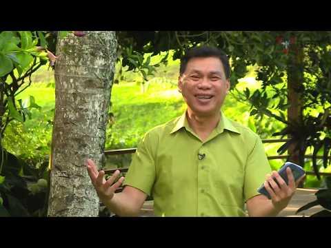 BERKAT FIRMAN | DOA BAPA KAMI ADALAH AJARAN YESUS | BLESSING IN THE SPIRIT CHURCH