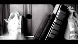 """Matt Tarka - """"Indigo Bunting"""" (Official Video)"""