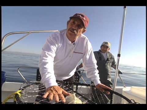 Crabbing in half moon bay youtube for Half moon bay fishing report