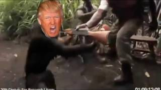 trump monkey with ak-47