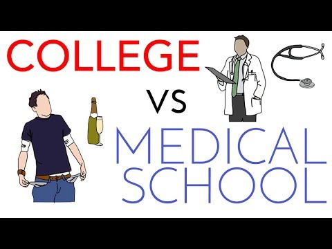 Medical School vs College Comparison