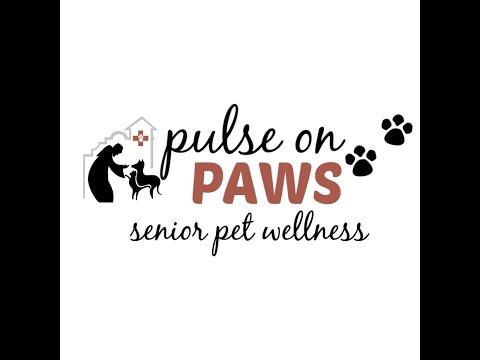 Pulse on Paws - Senior Pet Wellness