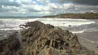 Daniel Scannell - seaweedjam project