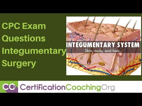 CPC Exam Questions — Integumentary Surgery