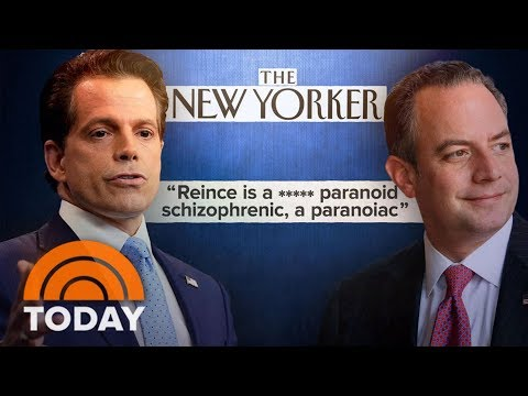 Anthony Scaramucci Rails Against Priebus, Bannon In Profanity-Laced Tirade | TODAY