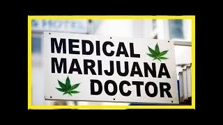 Ce que dit la science à propos des risques et bienfaits du cannabis
