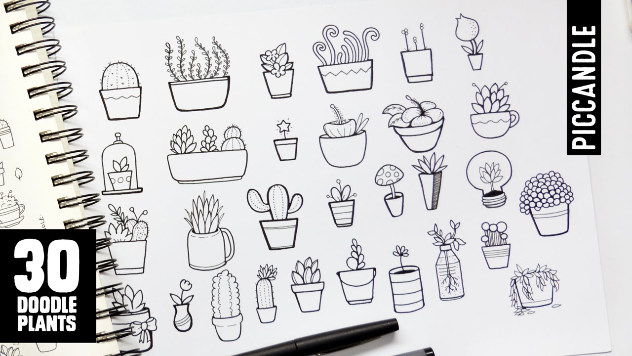 30 Plants To Doodle Succulents Cacti And More Youtube