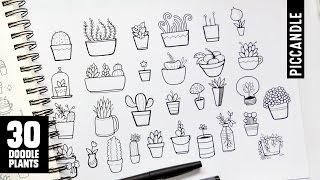 30 Plants to Doodle   Succulents, Cacti and more