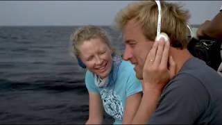 ПЛАСТИКОВЫЙ ОКЕАН. Один из лучших фильмов о загрязнении Мирового Океана