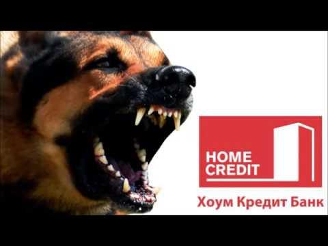 «Гнев Народа» - сайт, где можно пожаловаться онлайн на