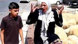 ابتهاج ملكة الدعايات خاروف العيد من عند ملحمة القيروان
