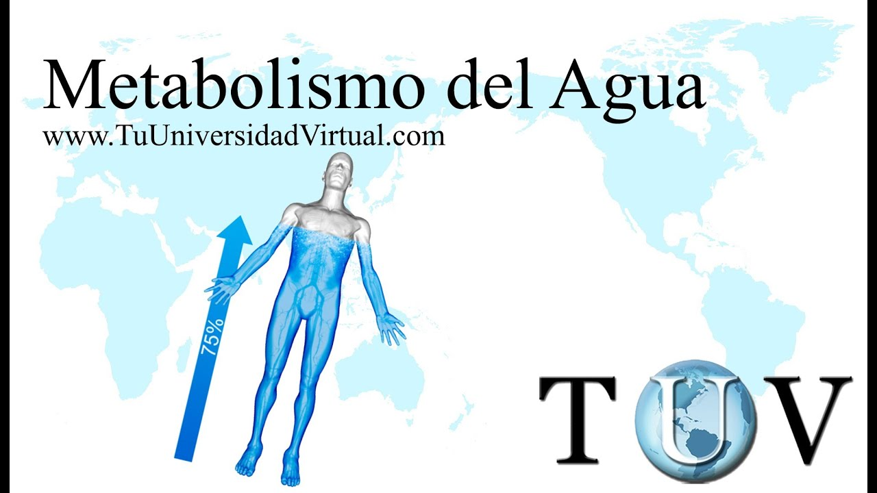 Metabolismo del agua y su relacion con la osmolaridad..