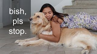 Hugging my sassy dog for too long [FUNNY REACTION] 😂