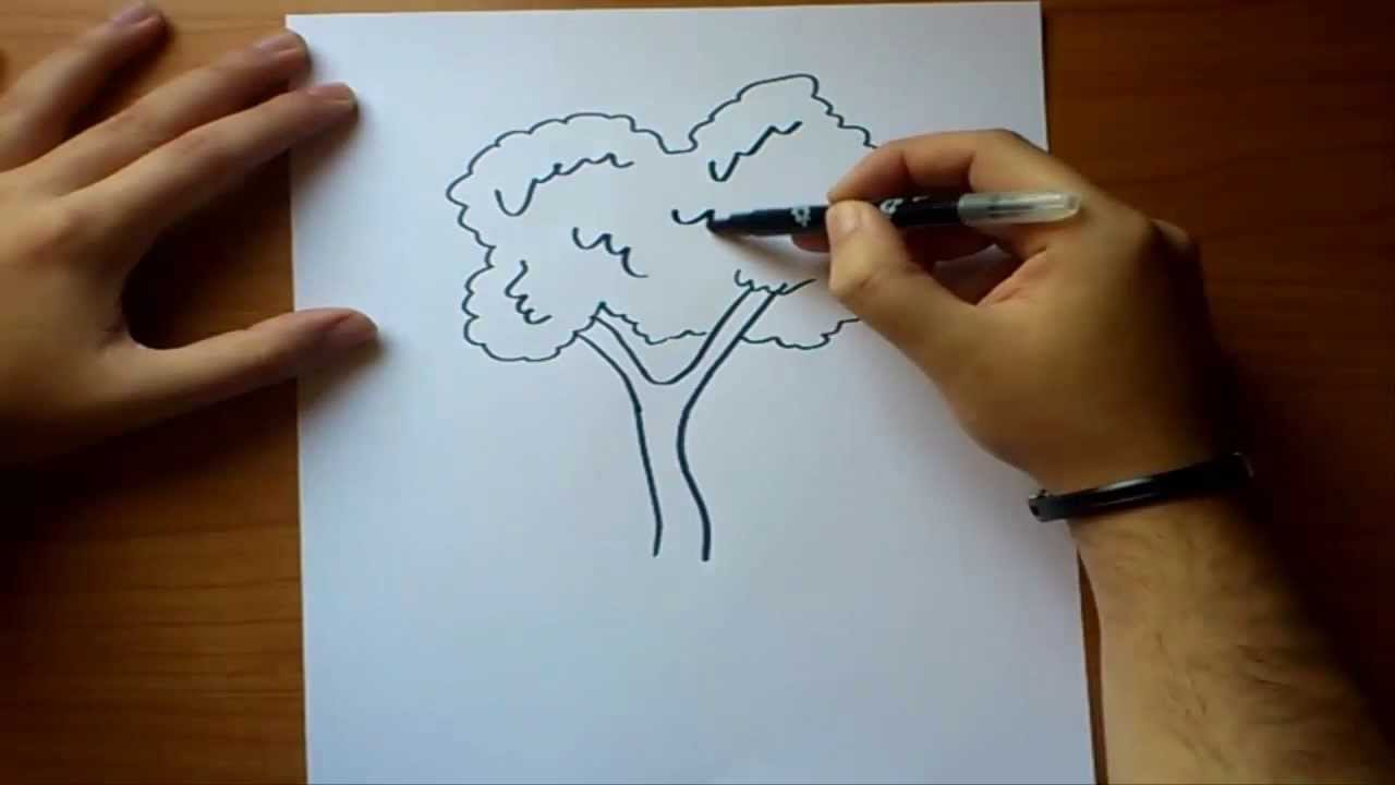 Como dibujar un arbol paso a paso  How to draw a tree  YouTube