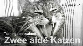 Tschingderassabum - Zwee alde Katzen - #HandaufsERZ