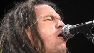 """""""I'd Rather Be Blind Crippled and Crazy"""" (Live)  """"Cover""""  Patrick Dodd Band!"""