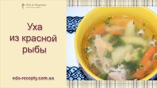 Уха из красной рыбы рецепт, fish soup Salmon