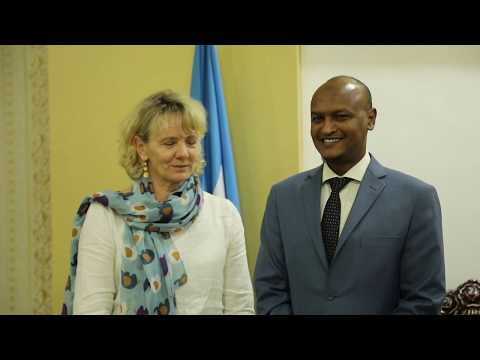 Deputy Prime Minister meets Danish Ambassador to Somalia