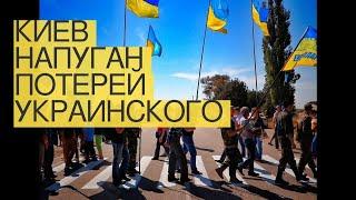 Киев напуган потерей «украинского Крыма»