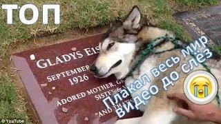 ТОП 5 самых грустных видео на You Tube| TOP 5 Sadest Videos on You Tube